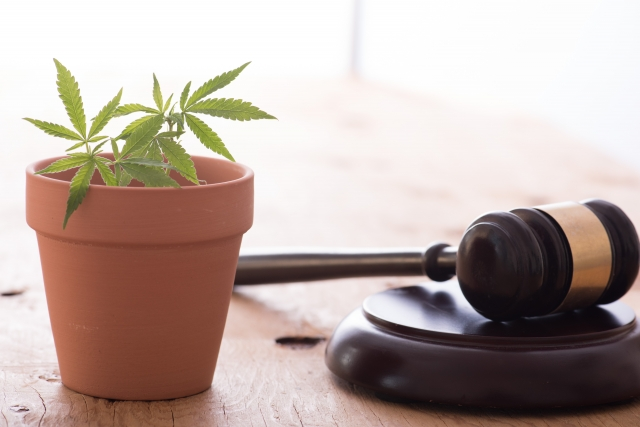 薬物事件を取り締まる法律の種類と刑罰
